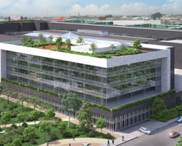 Cubiertas Verdes -Edificios de Oficinas